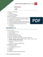 GUÍA ESTUDIO QIII 2010-11 (Rachel P6)