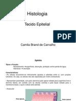 03_Tecido epitelial