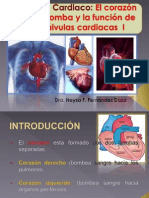 9.-Musculo-Cardiaco