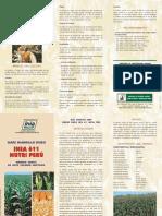 Maiz Amarillo Duro Inia 611- Nutri Peru