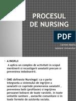 Procesul de Nursing
