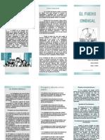 el fuero sindical.pdf