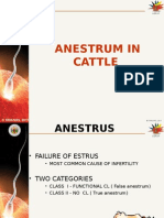 Anestrum-Edited.ppt