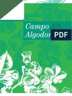 5. Campo Algodonero