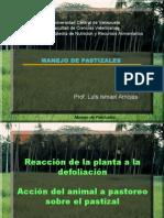 REACCION DE LA PLANTA AL PASTOREO2-1.ppt