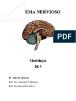 SISTEMA NERVIOSO 2013.pdf