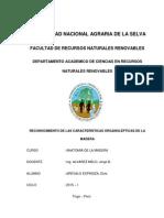 CARACTERISTICAS ORGANOLEPTICAS