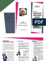 Producto 15. Competencias Profesionales Docentes
