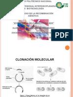 Estrategias de Clonación de DNA