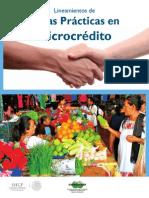 Sanas Practicas Microcreditos Condusef