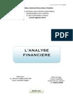 l'Analyse Financiere_ABDUU Janvier 2010