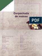 CHOQUE VILCA - MAICES DEL NOA.pdf