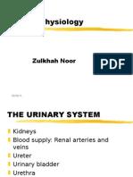 2 renal rev
