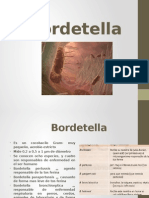 Bordetella.pptx