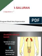 5 ASKEP Trauma Urogenital 2010