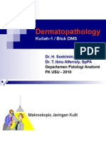 DMS. K12. Dermatopathology