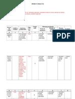 Plan Lectie Excel