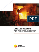 LIME AND DOLOMITE FOR THE STEEL INDUSTRY