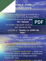 Boala Lyme -Borelioza