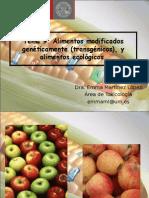 modificados-OMG geneticamente