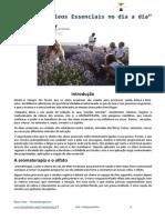 Manual Workshop Oleos Essencias Diarios
