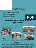copy of concentration camps presentations - amorette ortiz