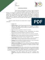 Pauta Informes Modelación y Simulación
