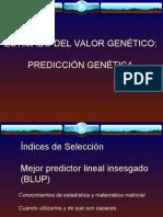 Tema 6 Unidad 10 y 11 predicción genética