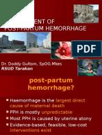 HPP (English)