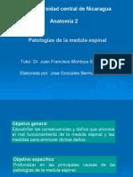 patologiasdelamedula-121105210717-phpapp02