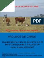 Power Point Vacunos de Carne