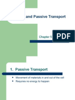 Active and Passive Transport Rhs