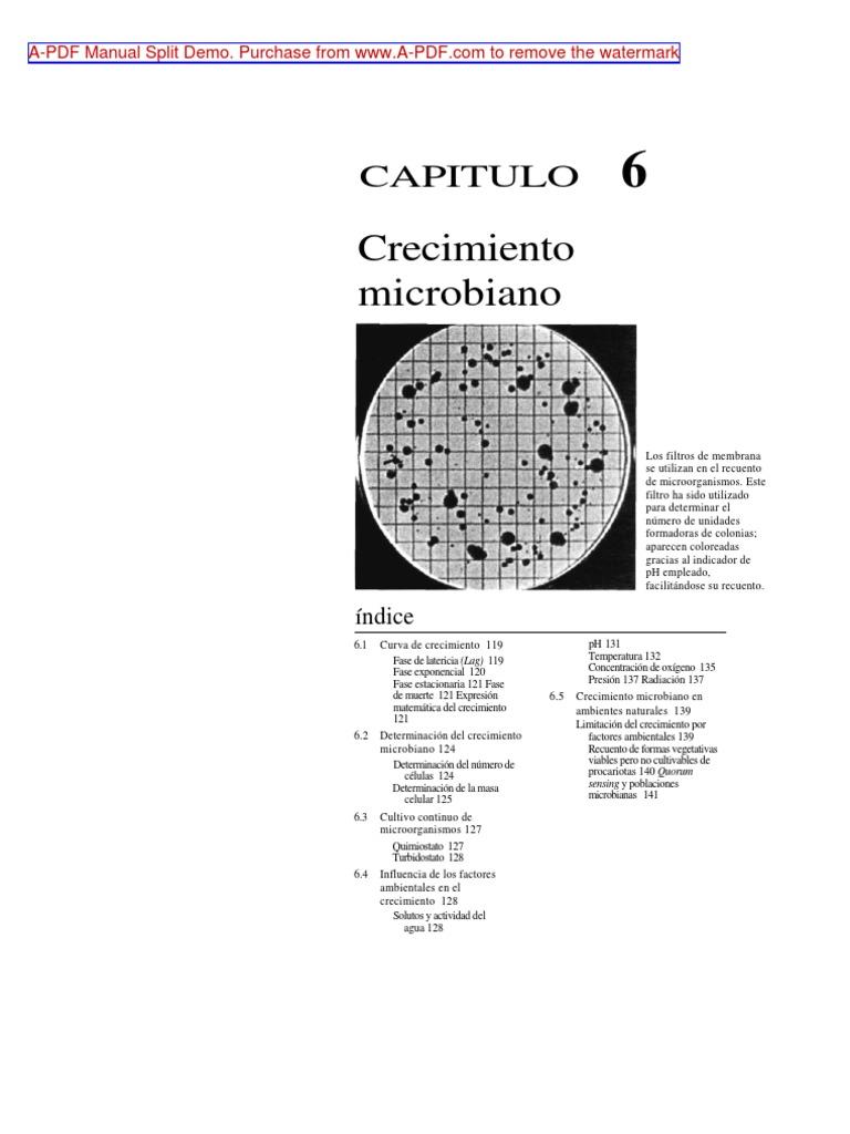 Famoso Reanudar Demo Ideas Ornamento Elaboración Festooning Adorno ...