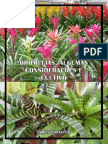 cultivodebromeliaceae-101111184509-phpapp02