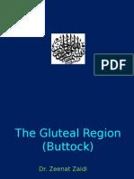 Gluteal Region