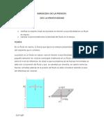 VARIACION DE LA PRESION.docx