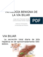 PatologiAތ-A Benigna de La ViAތ-A Biliar COMPLETA