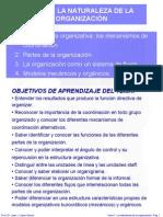 TEMA 1 LA NATURALEZA DE LA ORGANIZACIÓN.ppt