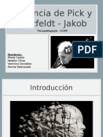 Ppt-pick y Jakob_final