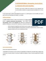 420 2014 02-18-29 Patologia Del Disco Intervertebral (1)