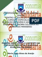 economia solidaria especialização