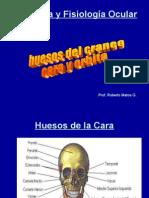 Anatomía y Fisiología Ocular(2) huesos