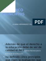 LOS CINCO PRINCIPIOS.pptx