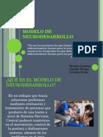 Modelo de Neurodesarrollo