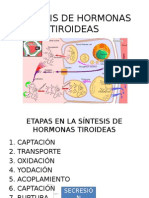 Síntesis de Hormonas Tiroideas