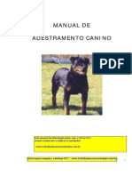 Curso de Adestramento Canino II