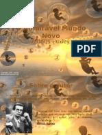 Slide Admiravel Mundo Novo (2)