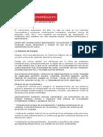 Casos Joint Venture.docx