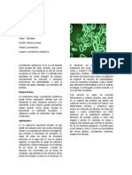 Lysinibacillus sphaericus