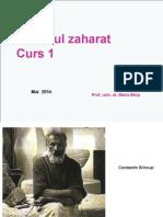 CURS 1 STUD DZ  2014